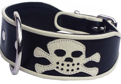 "Pirate Dog Collar as seen in ""Tamara Drewe"" - Holly & Lil Collars Handmade in Britain, Leather dog collars, leads & Dog harnesses."