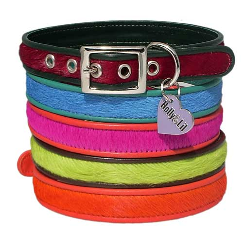Brightside Dog Collars Pink, Blue, Lime, Red and Orange