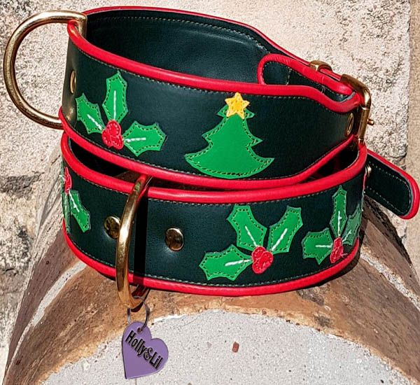 Santa Paws is coming - Christmas dog collars